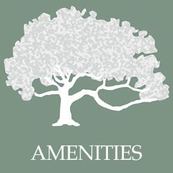 homestead-icon-button-amenities